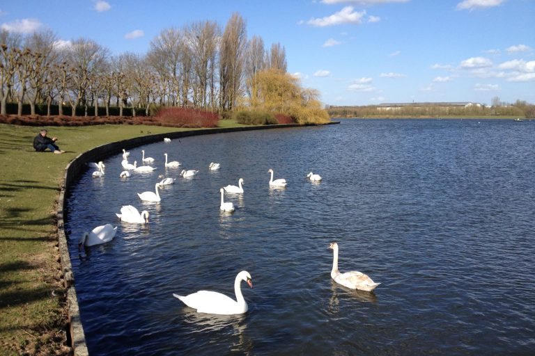 Willen Lake (Milton Keynes)