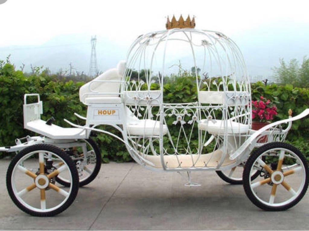 Cinderella Wagon Trip